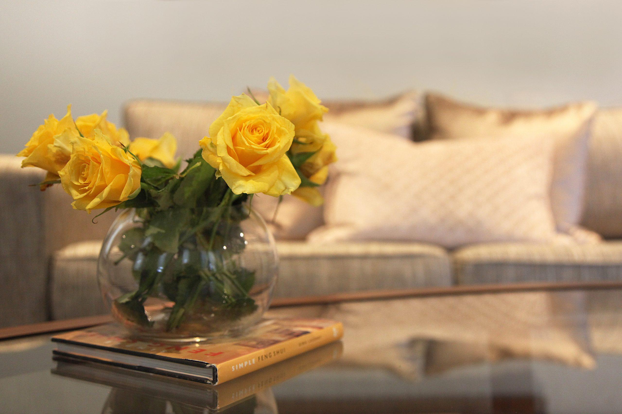 Sofa detail - Interior Designer Melbourne